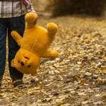 Стив Биддалф «Как развить мозг ребенка» и «Нужны ли детям ясли»