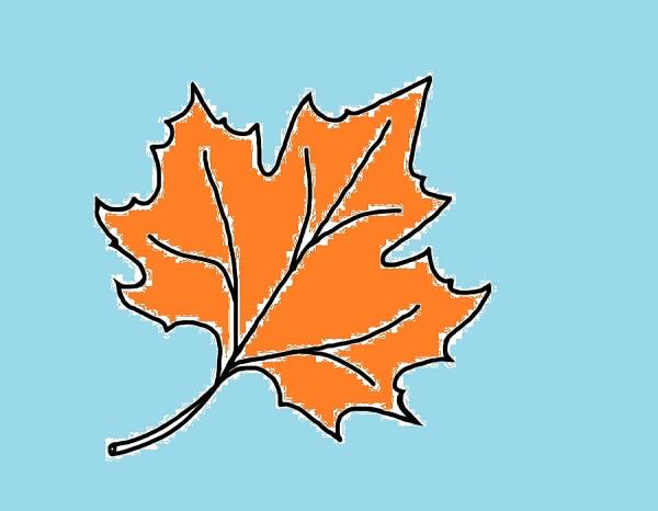 Кроссворд про осень с ответами
