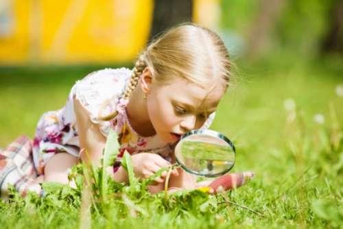 Одаренный ребенок иллюзии и реальность